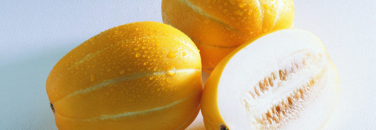 Медовые сорта дынь: обзор лучших тыквин со вкусом меда