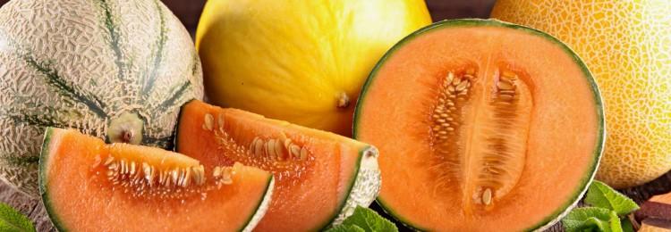 Сорта дынь с оранжевой мякотью