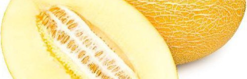 Сорт дыни «Гуляби»